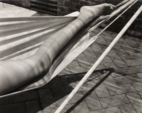 Legs in hammock, Laguna, 1937 by  Edward Weston *  from lotus-feet