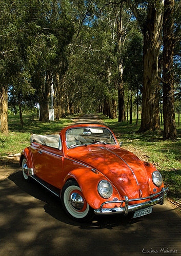Hot hot summer day Starring: Volkswagen Beetle (by Luciano Meirelles)