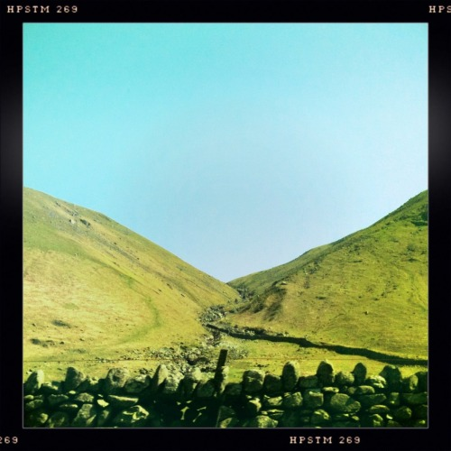 Jimmy Lens, Pistil Film, No Flash, Taken with Hipstamatic