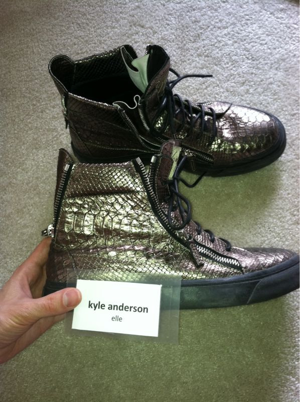 appointmentwithkyle:  My new giuseppe zanotti gold python sneakers for morocco  These are fucking mayja.