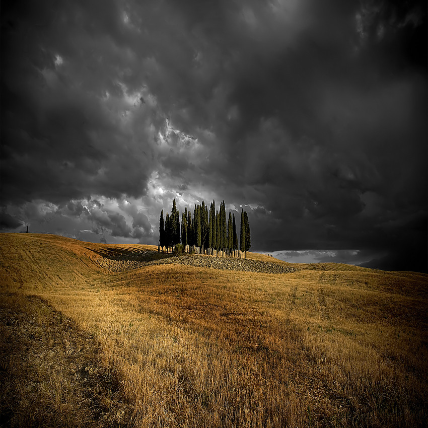 darkerangels:  Summer Contrast by Edmondo Senatore