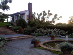 This is the art studio at the Home & Garden Retreat at sunset.