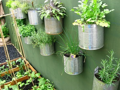 randommerde:  Awesome use of paint cans to double as wall-hanging plant holders.