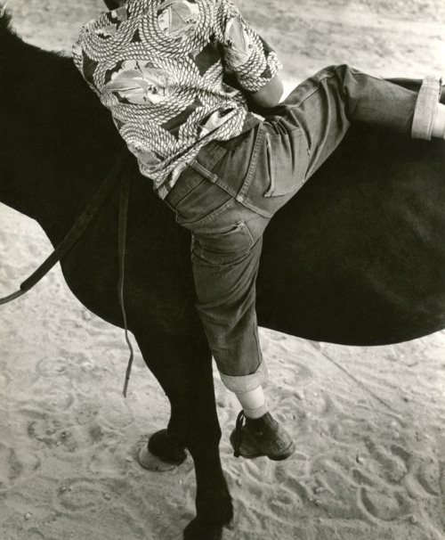 Dorothea Lange 'Horseplay, Gunlock, Utah', 1953 Silver gelatin photographBrigham Young University Museum of Art, purchased with funds provided by Jack and Mary Lois Wheatley Thanks to m-memeng and mudwerks