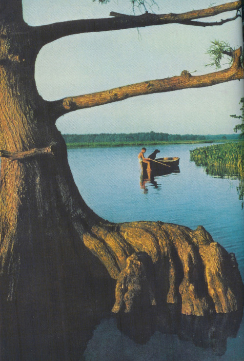 Chickahominy River, Virginia, USA, 1957