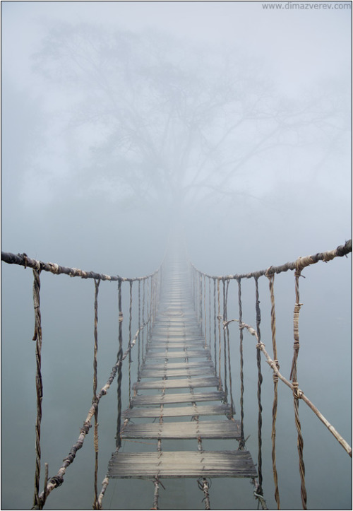 thesensualstarfish:   jerzee55:  Vietnam. Rope Bridge - Dima Zverev