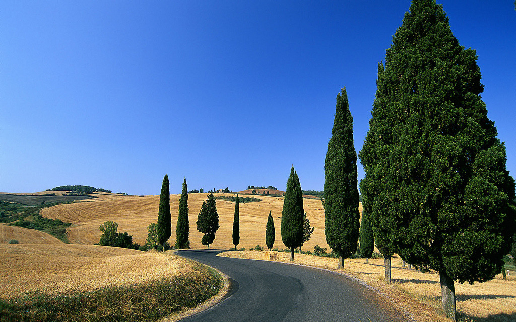 Winding Country Road in Monticchiello, Pienza, Italy.
