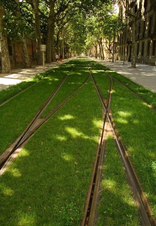 conceptlandscape:  Europe's Grass-Lined Tram Tracks There's something quite magical about watching trams in Barcelona, Strasbourg or Frankfurt glide silently along beds of grass as they do their city circuit. Where possible, this attractive combination of efficient public transport and inspired landscaping should be standard as part of the urban fabric. - Monocle Magazine  via agpopovska: handa