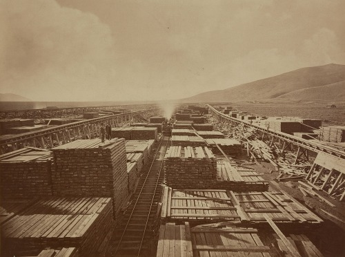 Upper End of Carson and Tahoe Lumber and Flume Co. Lumber and Wood Yard near Carson City, Nevada, 1876. Photo: Carlton Watkins. Standing on one of the huge lumber piles are two well-dressed individuals, both important figures in early Nevada history: D. O. Mills, president of the Virginia City Bank of California, and H. M. Yearington, superintendent of the Virginia and Truckee Railroad.