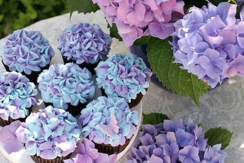 Hydrangeas are my favorite, and so are these adorable cupcakes! (Sans the sugar butterfly.bleh.)gastrogirl:  mother's day hydrangea cupcakes.