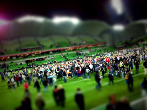 Crowd @ AAMI park