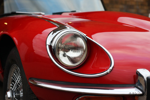 motoriginal:  Eye of the Tiger by Hipwell Photography Jaguar V12 E-Type (XKE) in the UK