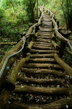 Tai Hang Mountain Trails, Taiwan