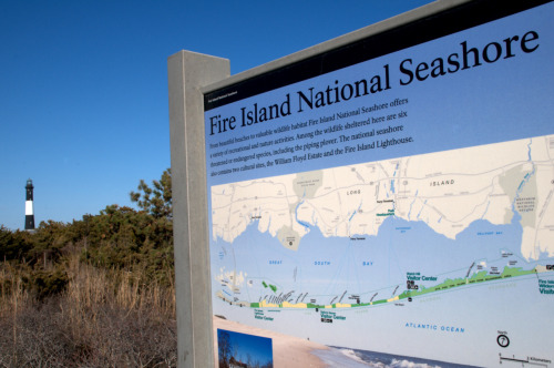 Fire Island National Seashore, NY.