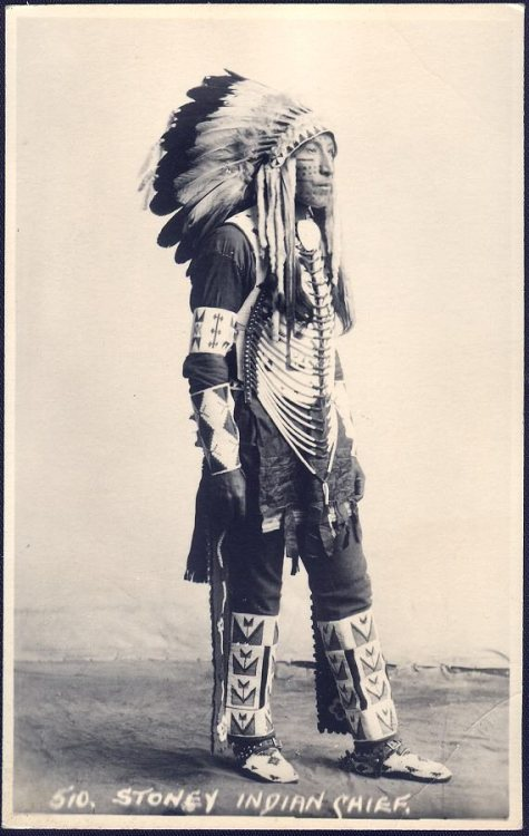 Stoney Indian Chief