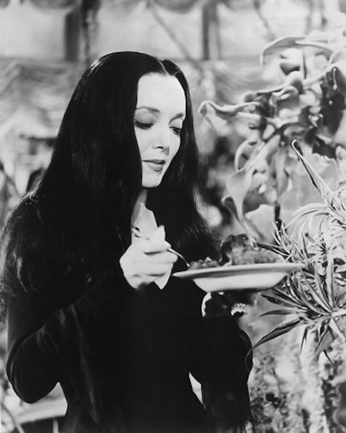 greggorysshocktheater:  Carolyn Jones as Morticia Addams preparing to feed her beloved carnivorous plant Cleopatra.