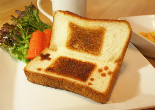 nintendo ds lite(ly toasted)