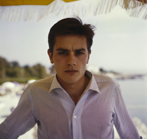 alaindelon:  At Cannes in 1959.