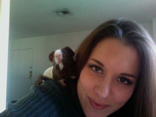 being a parrot pig while I do homework, nibbling on my hair and mint leaves.
