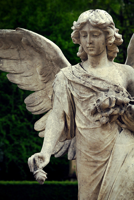 justcallmegrace:  Don't blink by archidave on Flickr.