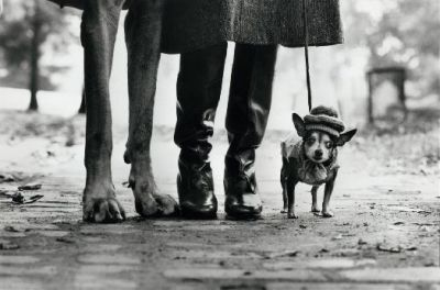 minusmanhattan:  Felix, Gladys, and Rover. New York. 1974. By Elliott Erwitt. Great interview with photographer Elliott Erwitt in The New York Times. Members of his family conducted the interview and I particularly liked what he had to say on the state of photography in the digital world:  Everybody is a photographer and that's going to continue to be. It's very seductive. But by the same token, everybody who has pencil is not necessarily a fine writer. It doesn't mean you really have to know that much to get a picture. I mean, photography is not brain surgery. It's not that complicated. It's easier now than it was before, but before it wasn't that hard. It was reasonably easy. It's not the ease; it's what you do and how you do it and how you construct your life and your vision.