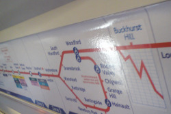 As the Central Line runs right under the City's financial district, TFL in their wisdom have decided in install stickers with live share prices, 24 hours a day, 365 days a year.