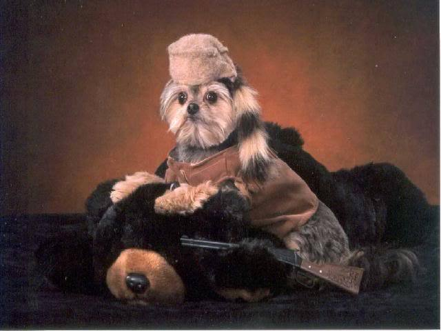 Ewok Crockett?