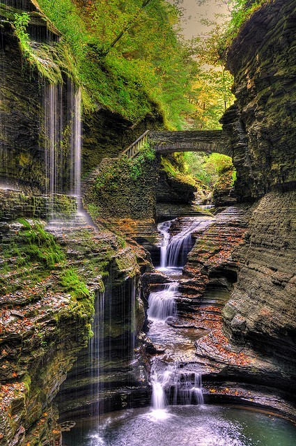 sunsurfer:  Watkins Glen State Park, New York photo by schimdtfamily