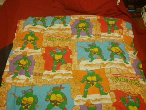 TMNT Bedspread Courtesy of Eli Sairs