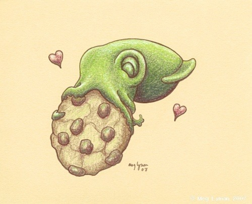 Squid love cookies. #squidfact