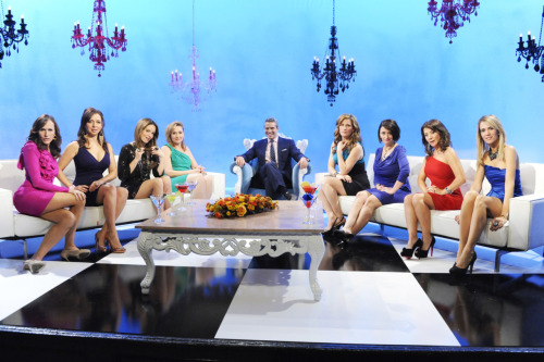 Real Housewives of New Jersey reunion: Molly Shannon, Maya Rudolph, Tina Fey, Nora Dunn, Ana Gasteyer, Rachel Dratch, Cheri Oteri, and Kristen Wiig.