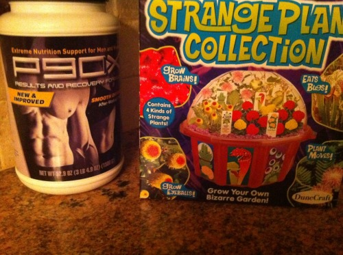 Here's the shake mix that comes with my p90x workout and my strange plant collection :) I plan on looking like the guy on the shake mix container in 90 days…just so you know :p