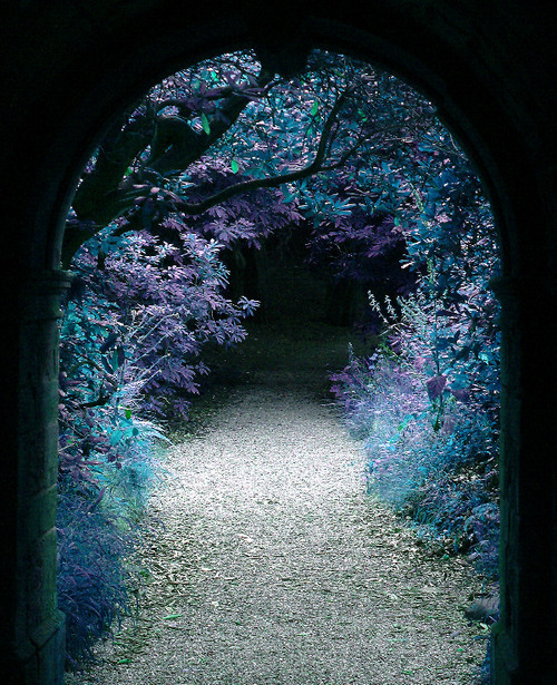 luthienthye:  another Portal to …