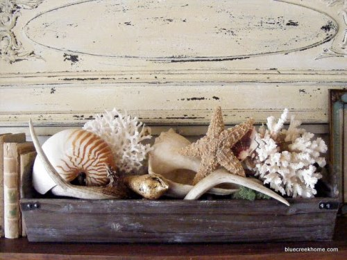 sittinginthesand:  Seashells on a Mantel http://www.sallyleebythesea.com/ photo http://www.bluecreekhome.com/