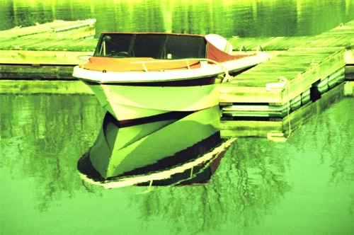 Green Reflections Nikon 8008s Expired Fujichrome MS (cross processed)  (by blormore)