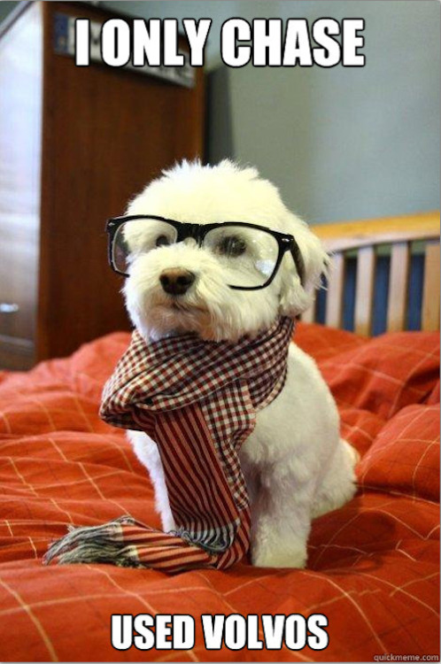 Hipster Dog loves thepetdeal.com thatlame:  You've never heard of my bones? Probably because they're so underground.