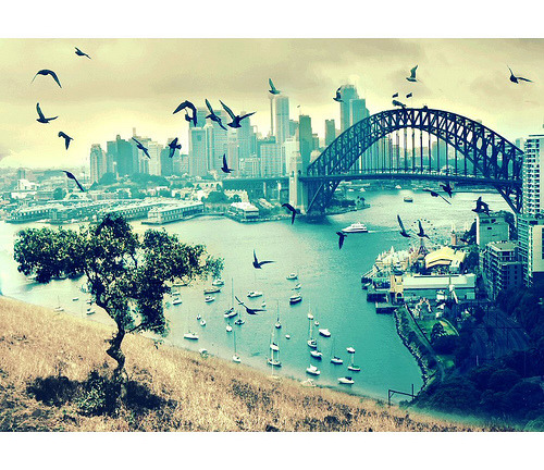 This is the city i live in <3 Sydney :)