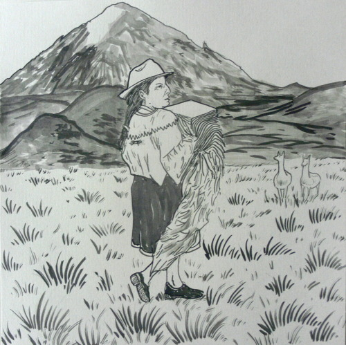 Meredith Blumthal needed a drawing of Ecuador. Ink, 12x12 in.