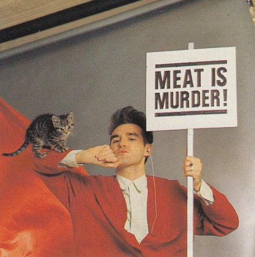 stop that cat. you do not want to support a vegetarian. you eat meat you are a cat. i mean i'm pretty sure you only eat my plants to make me angry.