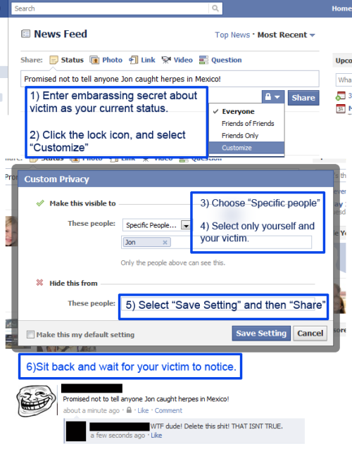 epic, but safe, facebook trolling method