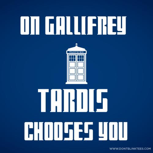 On Gallifrey TARDIS chooses you.