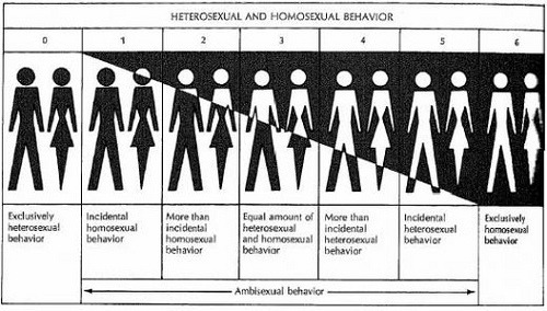ilovecharts:  The classic depiction of the Kinsey scale, which ranges from 0 to 6.  Most people would probably like to believe it should range from 0 to 1, or even 0 to 2.  Oh, denial. -danteshepherd Good to see Dante on Tumblr, even though he appears to be doing nothing with it…