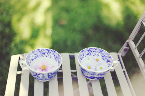 lapaixetlaserenite:  Tea for two. (by Kitty Gallannaugh)