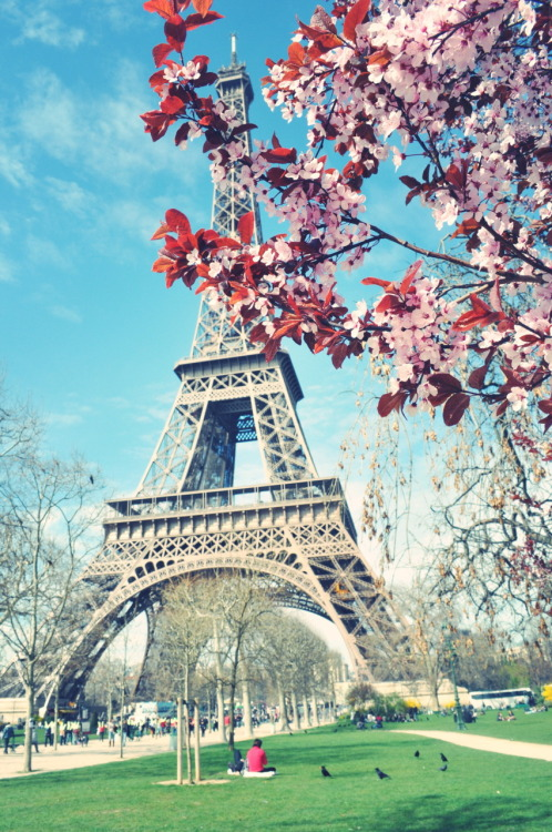 In a Paris state of mind.  dopeofmine:  Paris, in the Springtime.