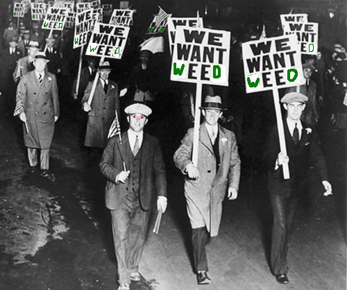 WE WANT WEED Original