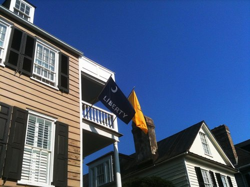 The little known Moultrie Flag. Charleston, S.C. Born and raised. Gadsden Flag behind it. ……Shame the Gadsden has been hijack by the Tea Party.