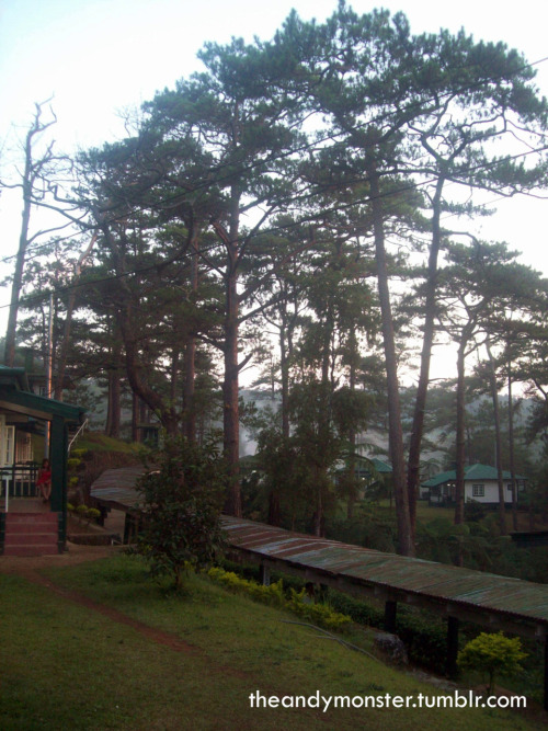Baguio Teachers' Camp