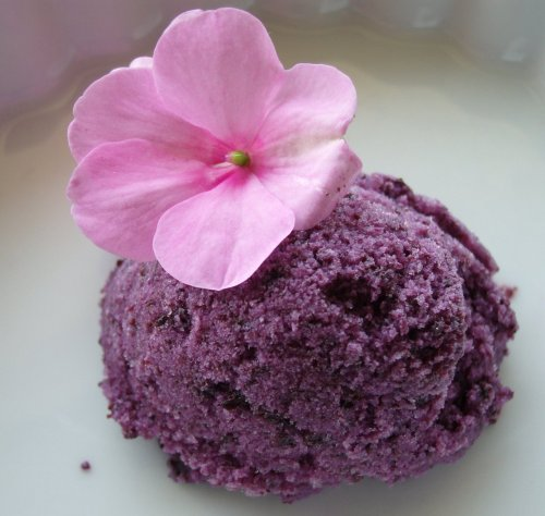 Vegan Blueberry Ice Dream
