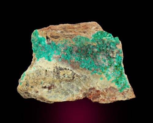 Dioptase with Wulfenite from Arizona