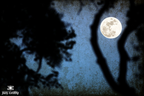 "May Moon by Jim Crotty on Flickr.The May Moon last night. The ""Flower Moon"" of May. Actually will be completely full tonight. Moonrise @ 8:59 PM EST."